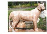 panthera tigris 001